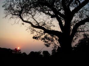 Another day passes as the sun sets at Kolkata