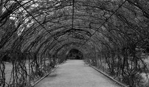 An empty path